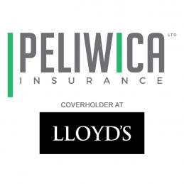 Peliwica Insurance